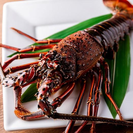 川崎の鉄板焼き【円居】で記念日に最適な伊勢海老を味わう